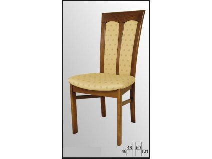 Jídelní židle AQ-O905