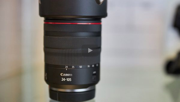 Canon RF 24-105 L IS USM