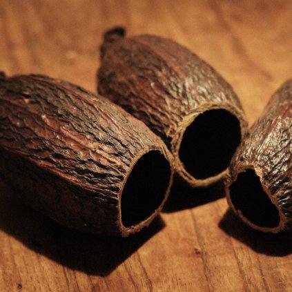 Cacao - úkryt