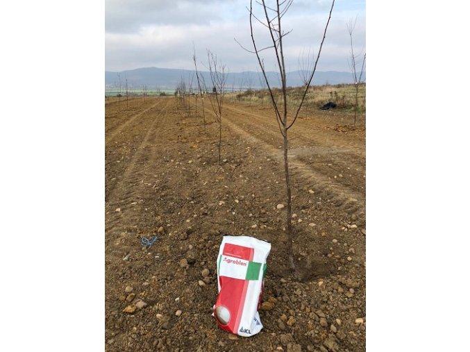 Agroblen ICL hnojivo