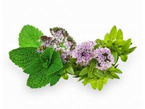Spiro Therapy aróma olej