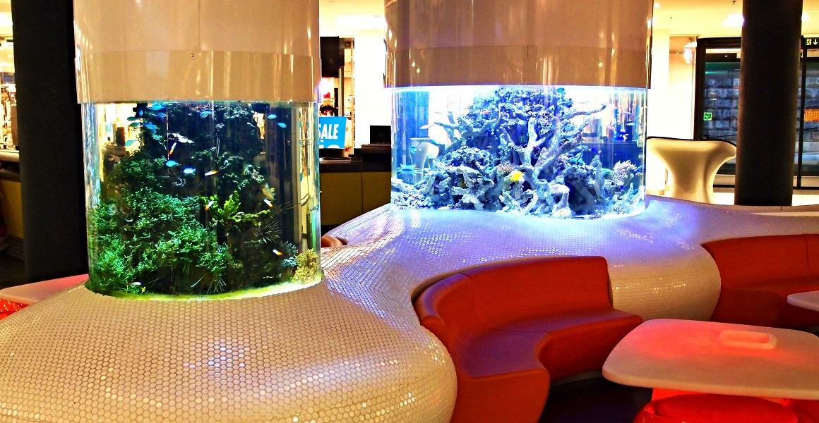 Morské akváriá na mieru