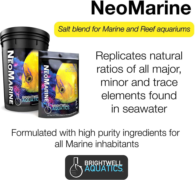 neomarine_banner