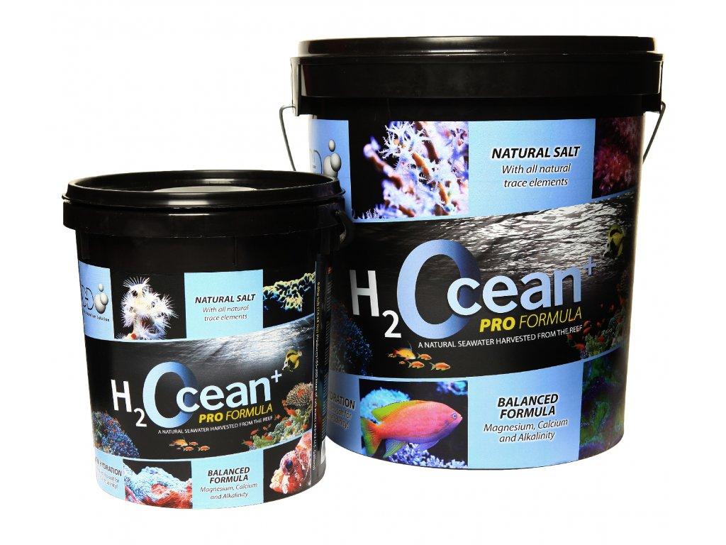 h2ocean pro plus salt family