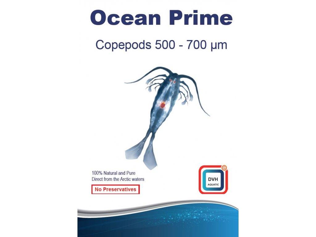 ocean prime 500 700mu