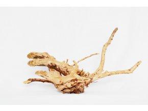 koreň 0034  Red Moor Wood korene