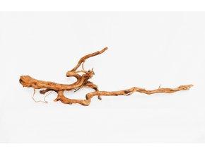 koreň 0037  Red Moor Wood korene
