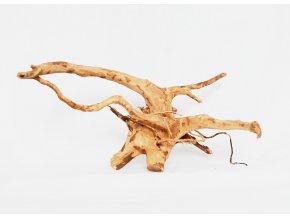 koreň 0039  Red Moor Wood korene