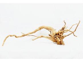 koreň 0051  Red Moor Wood
