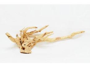 koreň 0055  Red Moor Wood
