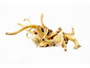 koreň 0007  Red Moor Wood korene
