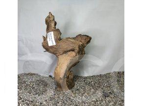 Koreň Savana wood L - SWL 003