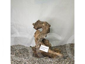 Koreň Savana wood L - SWL 004