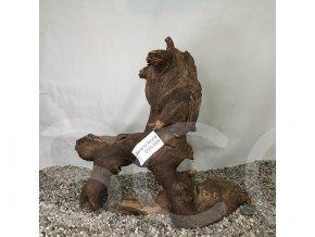 Koreň Savana wood L - SWL 005