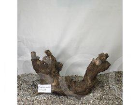 Koreň Savana wood L - SWL 008