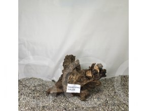 Koreň Savana wood L - SWL 009