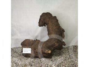 Koreň Savana wood L - SWL 012