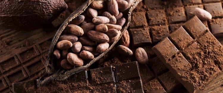 Odhalte, co stojí za původem čokolády