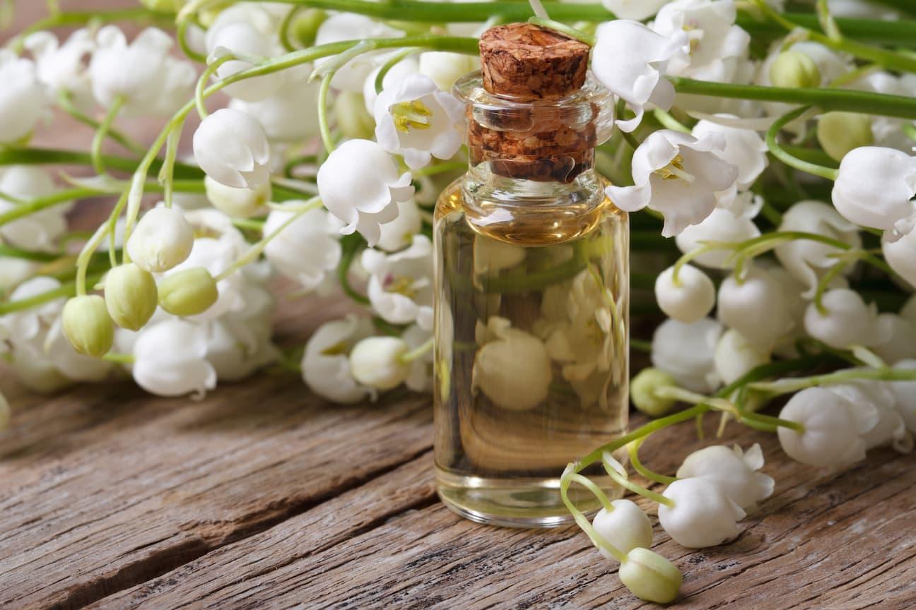 Konvalinka a parfémy