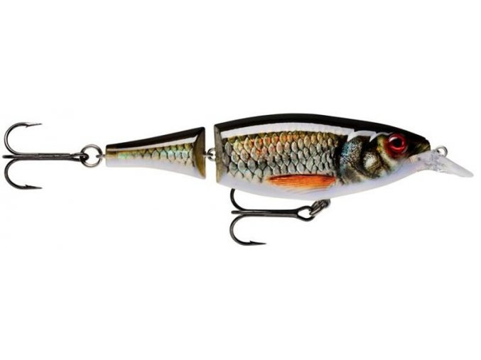 X-Rap Jointed Shad 13 (VARIANT Live Roach)