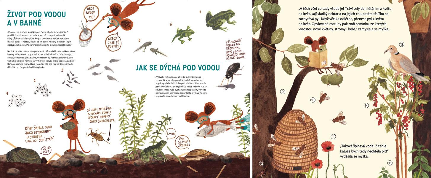 hravouka-myska-pise-encyklopedii1