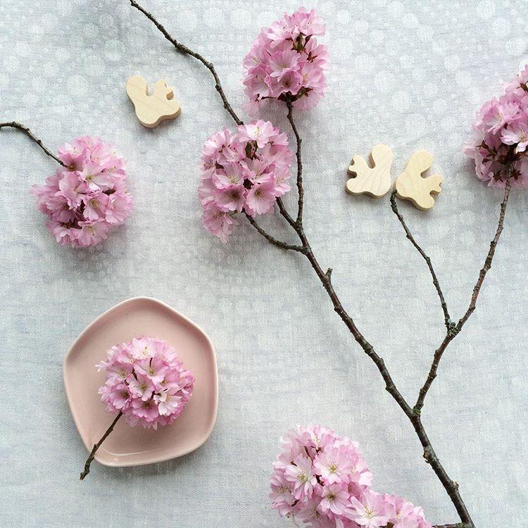 kvetiny-a-iitala1
