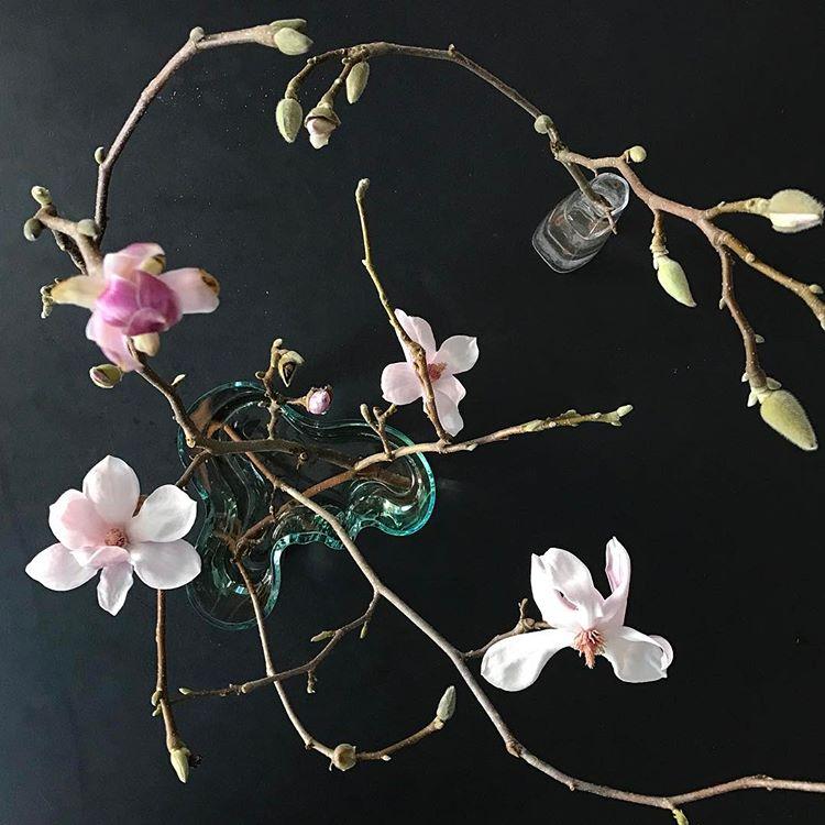 kvetiny-a-iitala7