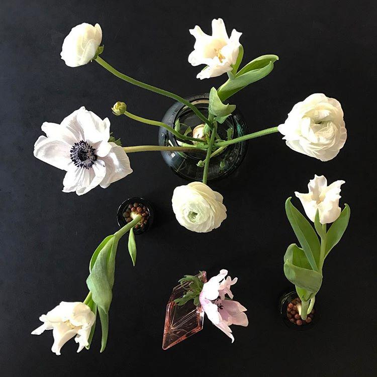 kvetiny-a-iitala8
