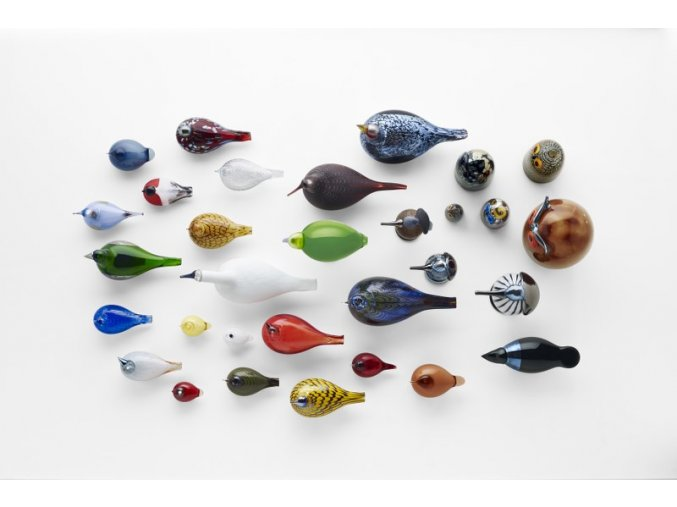 Birds by Toikka Kuulas rain