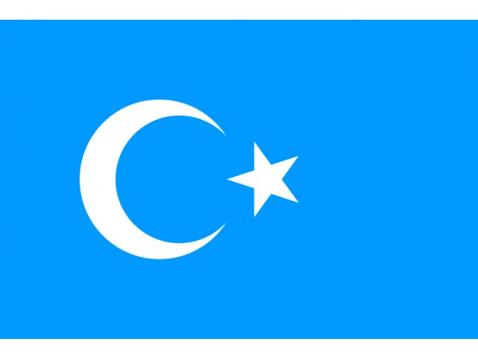 800px Eastern Turkistan Flag.svg