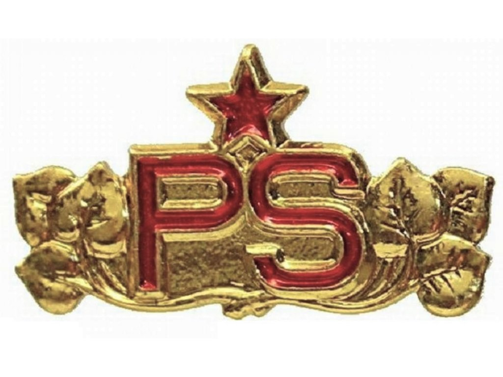Odznak ČSLA PS zlatavý Pohraniční stráž