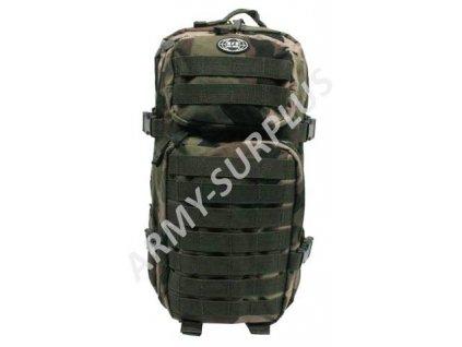 Batoh ASSAULT Pack US 20L molle malý CCE