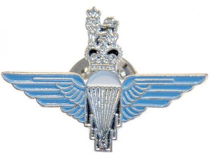 Odznak na baret Para barevný Mil-Com