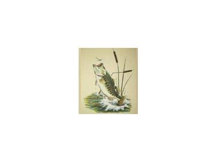Tričko (triko) potisk ryba v rákosí