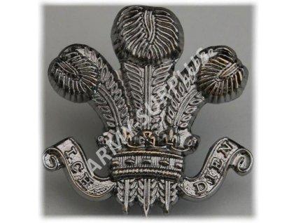 Odznak britský Velká Británie Denbighshire Hussars