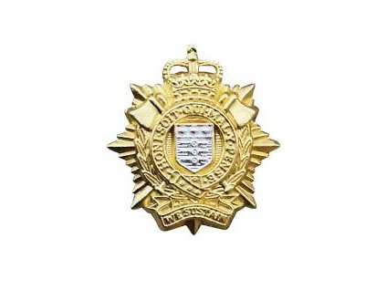 odznak-britsky-na-baret-velka-britanie-royal-logistic-corps-10th