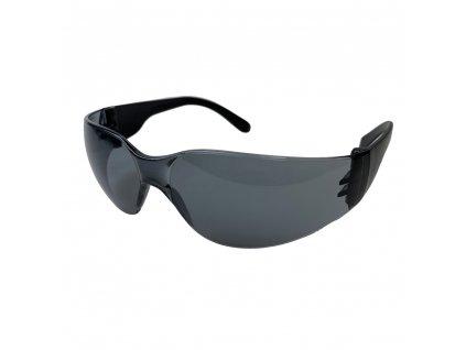 Ochranné brýle Arty 250 s polykarbonátovým zorníkem kouřové ARTILUX