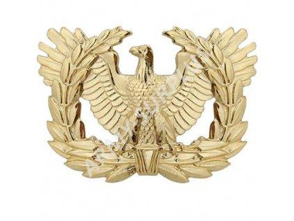 Odznak U.S. Army Warrant officer