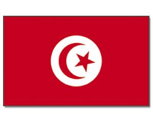 PROMEX Vlajka 90x150cm Tunis č.222