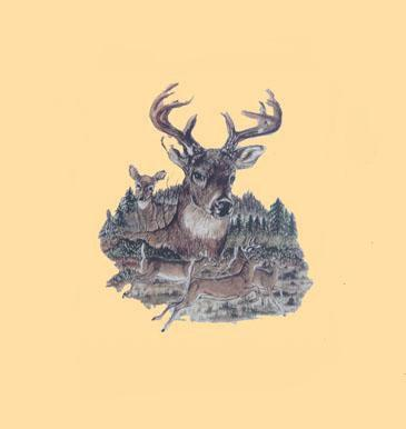 ČESKÝ VÝROBCE Tričko (triko) potisk jelení stádo Velikost a varianta: XXL tmavě zelené