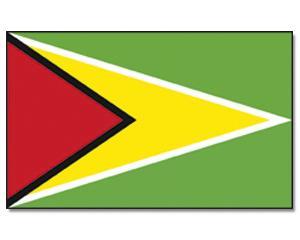 PROMEX Vlajka Guyana 90x150cm č.144