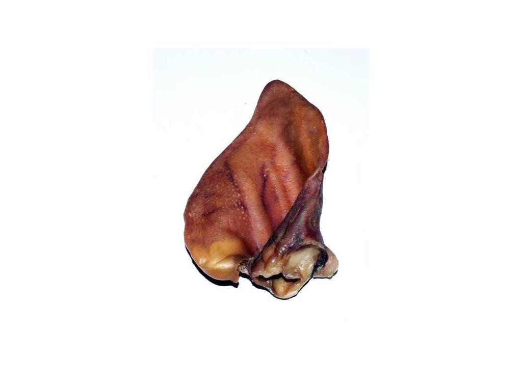 Ucho sušené vepřové