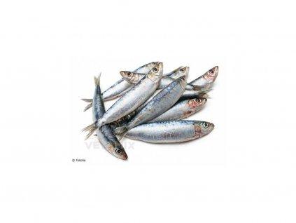 sardinky vetamix 500g