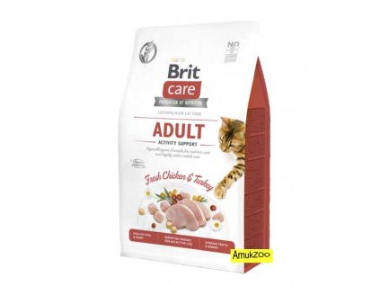 brit care activity support