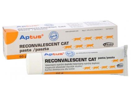aptus reconvalescent cat