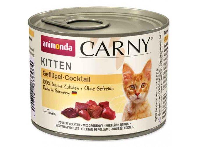 carny kitten drubezi