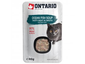 ONTARIO Cat Soup Ocean Fish