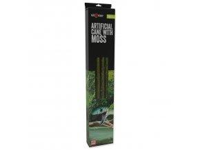 Dekorace liána REPTI PLANET s mechem šířka 2cm délka 200cm