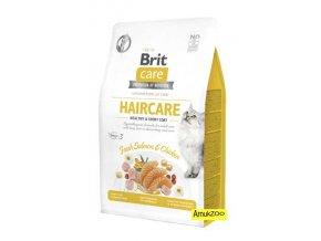 brit care haircare