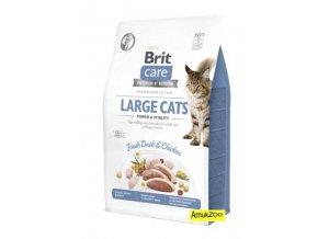 brit care large cats